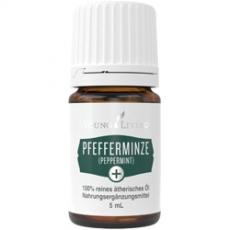 Pfefferminze + - Peppermint + 5 ml